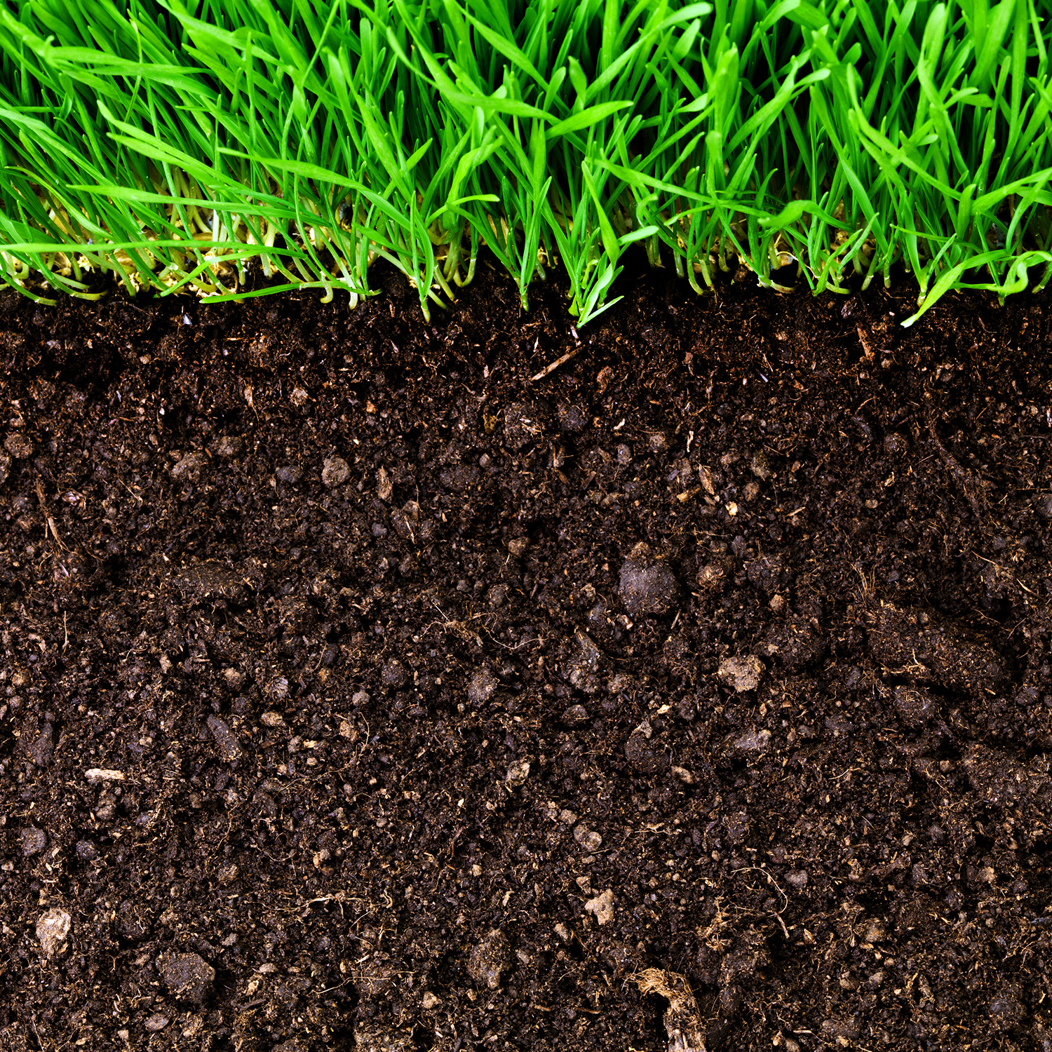 Emerging land use practices rapidly increase soil organic for Three uses of soil