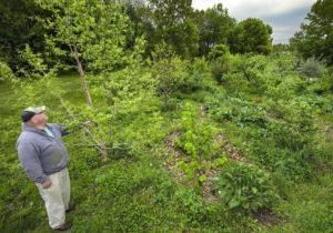 Food Forests HH al 042916 0 (6)