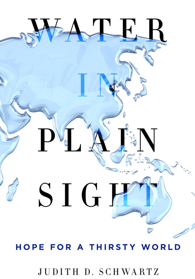 Water in Plain Sight- 9781250069917-1