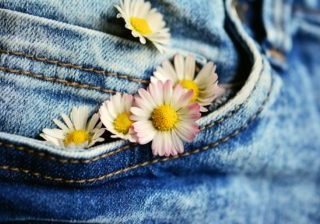 denim blue jeans pocket daisy flowers